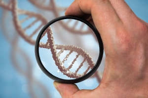 Признание отцовства в добровольном порядке без генетической экспертизы
