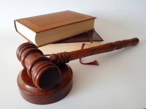 Порядок рассмотрения дел по лишению родительских прав