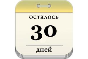 Сколько времени дается на замену удостоверения личности в 20 лет