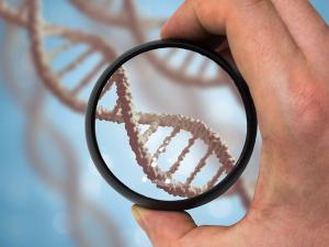 Тест ДНК на отцовство: как сделать, если мать против?