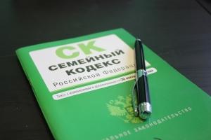 Основные нюансы, которые прописаны в ст. 45 СК РФ