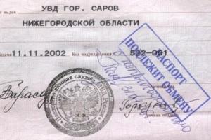 Действителен ли паспорт, если в дате рождения есть ошибки?